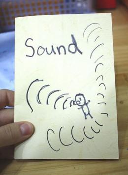 sound flag book cover