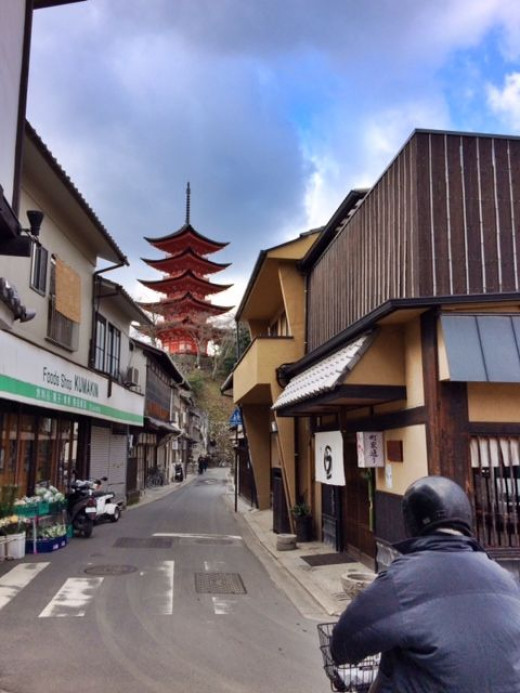 Just behind the shrine complex, there are numerous streets leading to shops, houses and other temples.