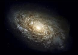 Dark energy or dark matter