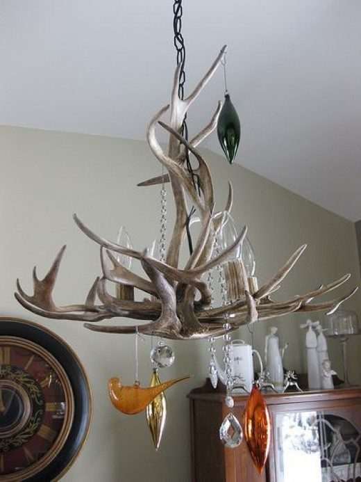 Fallen_antlers_chandelier.jpg