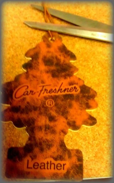 Air Freshener Craft Project
