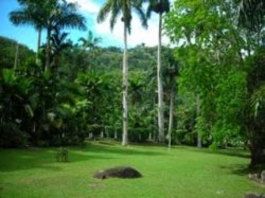 Castleton Gardens, St. Mary, Jamaica