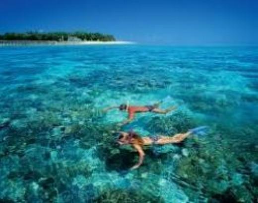 snorkel-great-barrier-reef.jpg