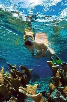 bonaire-snorkeling.jpg