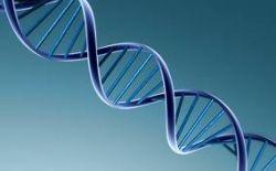 biotechnology.jpg