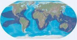 hawksbill-sea-turtle-habitat.jpg