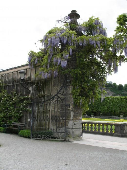 Entrance to Mirabell Garden