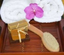 Dry Skin Brushing For Whole Body Health
