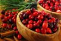 Cranberries at the First  US Thanksgiving