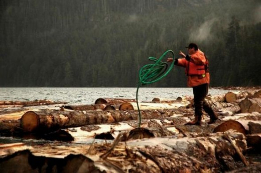 A Huu-ay-aht forestry worker at work