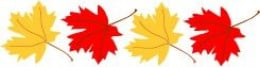 Maple Leaves by Lee Hansen Graphics