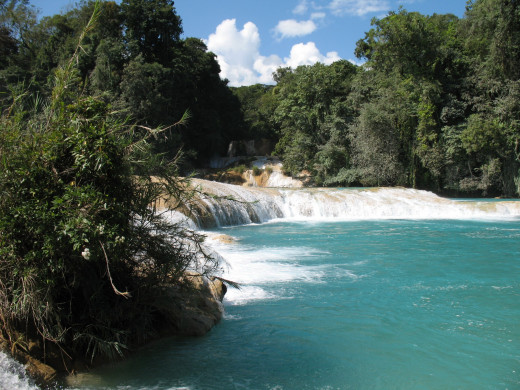 Amazing blue waters of Agua Azul