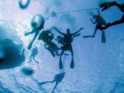 deep-dive.jpg
