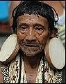 Elder of the Brazilian Tribe Rikbaktsa
