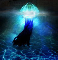 Pool JellyFish