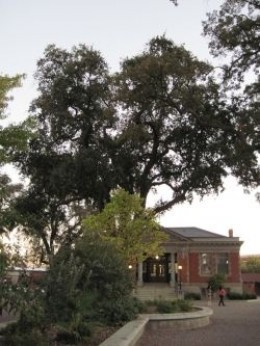The Historic Carnegie Library has been replaced by a new library that is much more modern.