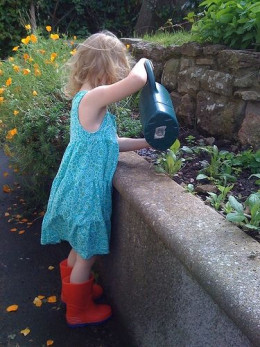 Watering the Vegetables