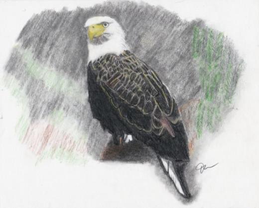 Pastel Eagle
