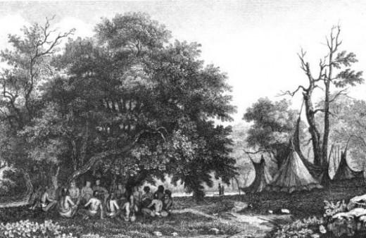 1562 Florida Teepees