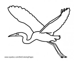 Heron / Egret Coloring Pages