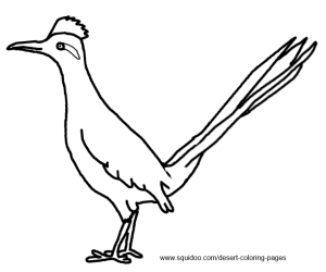 Roadrunner Coloring Pages