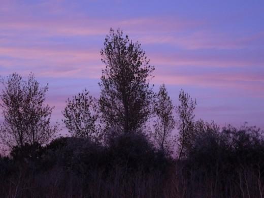 Scene 2, dusk/dawn setting.