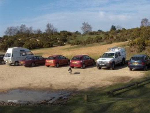 A New Forest car park