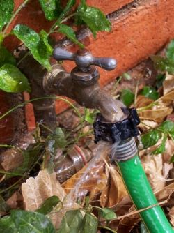 access to water for your vegetable garden