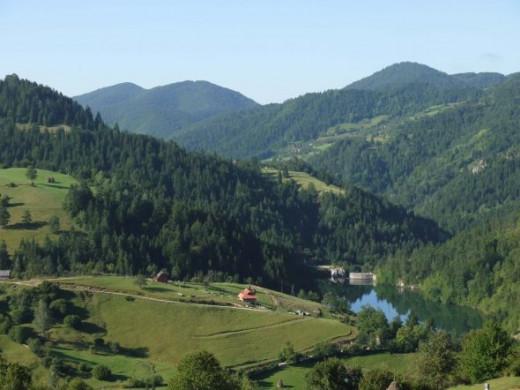 Tara National Park, Serbia