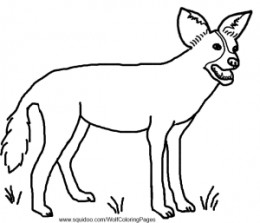Wolf and other wild dogs facts and coloring pages for African wild dog coloring pages