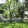 A Day in The Shade: Templeton's Annual Day of Art in the Park