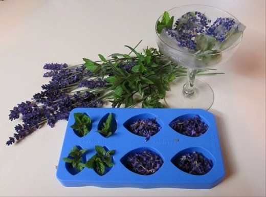 Lavender and Mint Ice Cubes
