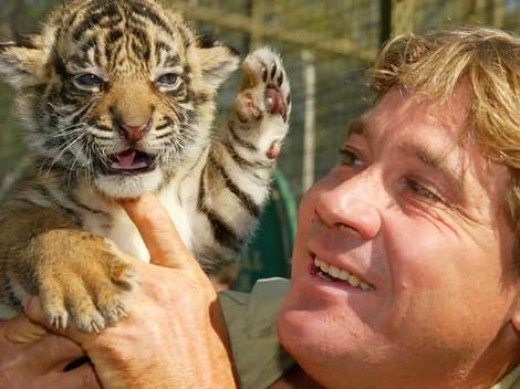 Steve Irwin With Tiger Cub