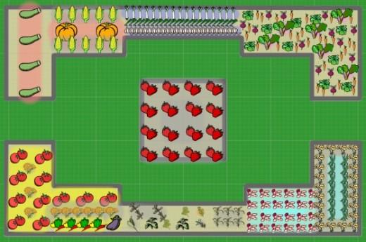 spring - summer vegetable garden crop rotation