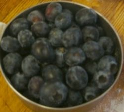 A cup of raw blueberries