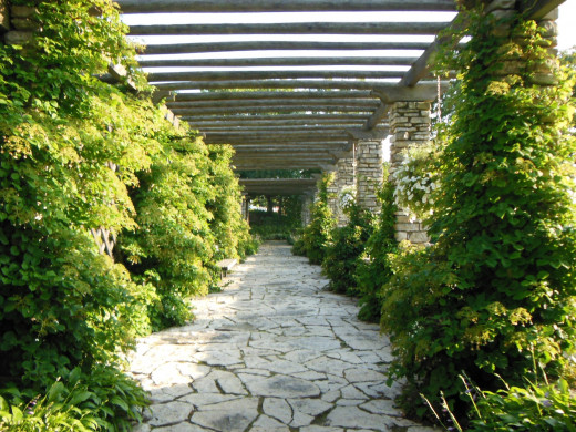 Frame Park Formal Gardens
