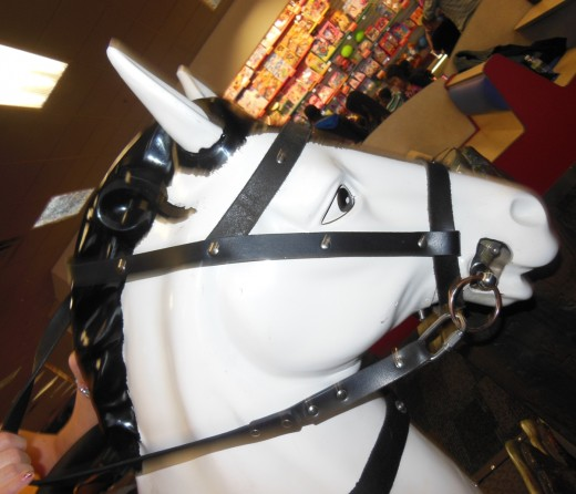 You can ride this cute horse as a racetrack appears on the screen in front of you.  So fun!