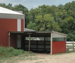 Make sure your horse has a 3-sided shelter available at all times.
