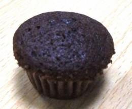 cocoa chocolate muffin