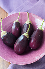 Baby Eggplants (Photo courtesy by skrockodile from Flickr)