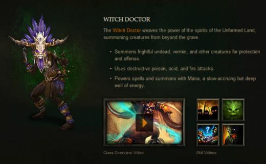 diablo-3-wtich-doctor-overview