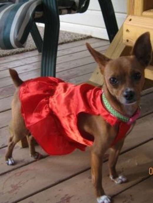 Lexie in her pretty red dress
