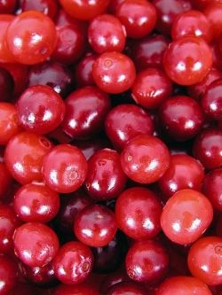 whole cranberries from Maine