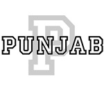 Punjab and other cities t-shirts available