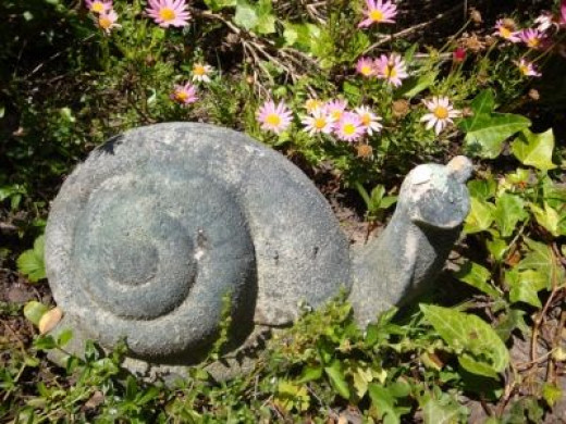 Slow but steady-footed, the snail symbolizes stability.