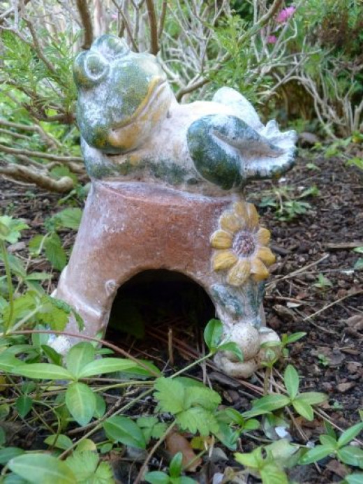 Every garden needs a toadhouse - no visitors so far