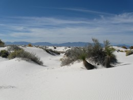 Sand Dunes in New Mexico's White Sands National Monument