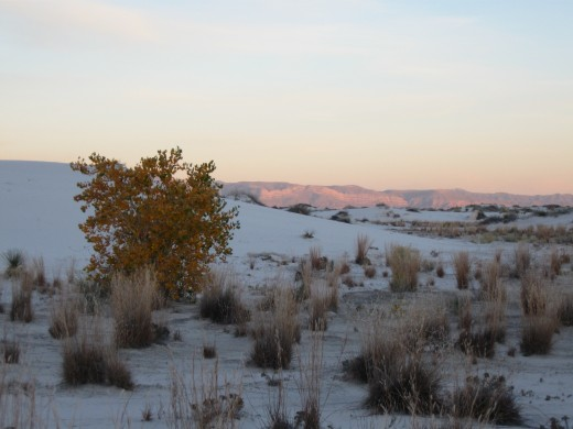 Sun setting in distance at  White Sands National Monument, NM