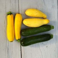 What to do with Zucchini?
