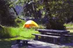 Hoh Rainforest Campground